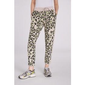 Hose/Pants